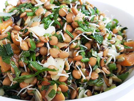Vegan Sprouted Lentil Salad