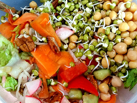 Vegetable Salad with Sprouted Mung Bean and Chickpea