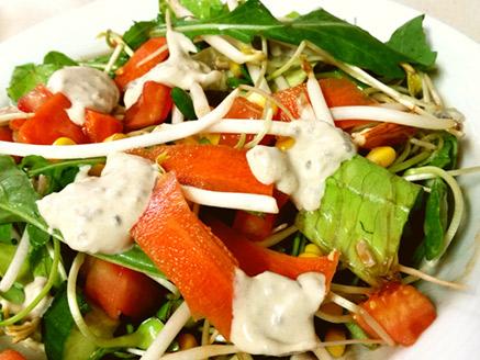 Rich Vegan Salad with Tahini Sauce